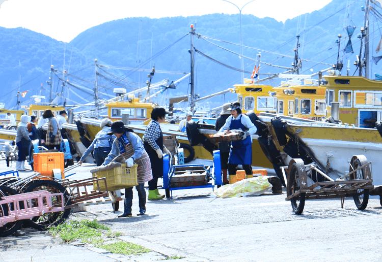 江戸後期には17戸だった小さな漁村が時を経て独自の人情味あふれる港に。ここはその文化を継ぐ新たな交流拠点です。