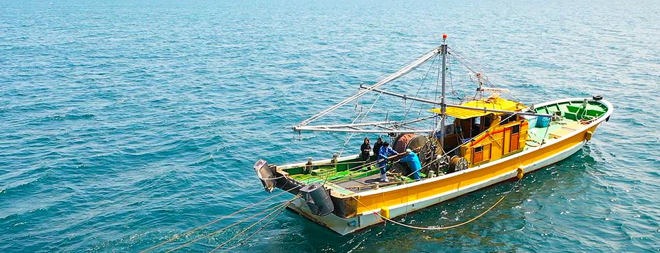 Small-scale ship (class 2 ship) bottom trawling fishing