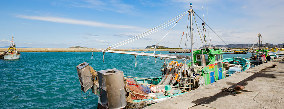 Small-scale ship (class 3 ship) bottom trawling fishing