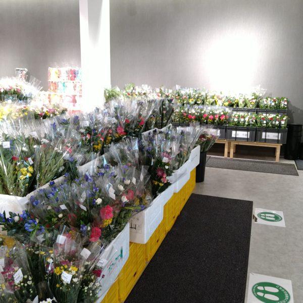 仏花ございます。