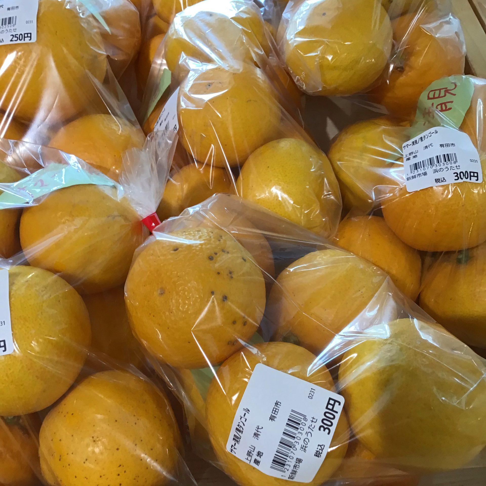 旬の柑橘あります!