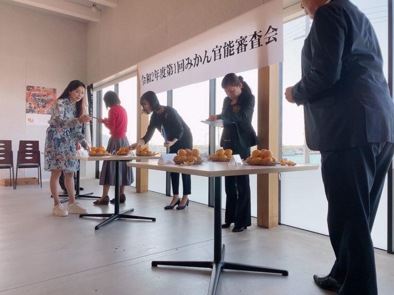 令和3年10月12日(火) 第1回有田市認定みかん官能審査会 開催